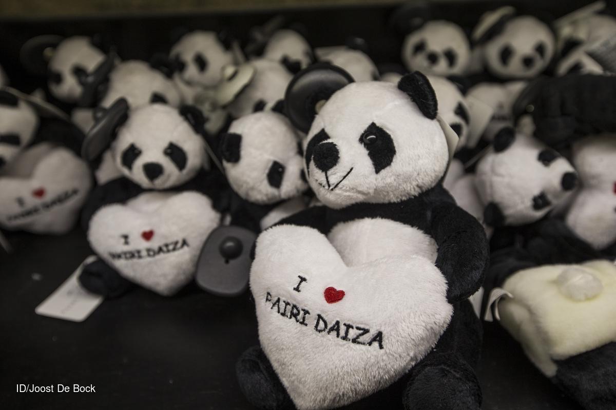 20140625 reportage Pairi Daiza - Brugelette dag 1 bij de panda's CREDIT: Imagedesk / Joost De Bock